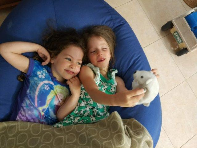 סוף שנה, תחילת הקיץ והרבה תמונות ילדים