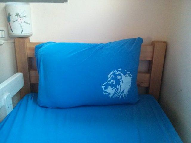נייר פריזר – אריה לאורן