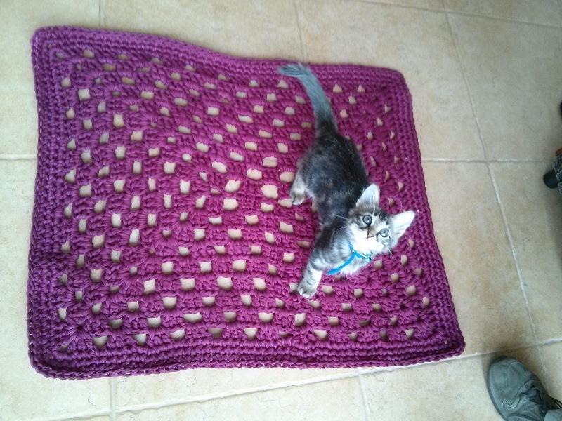 שטיח חדש לחדר מקלחת