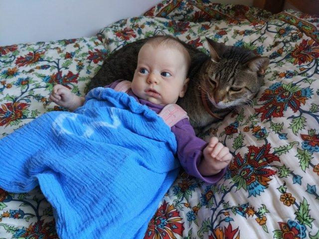רצועות פאבליק או ילדה בשק